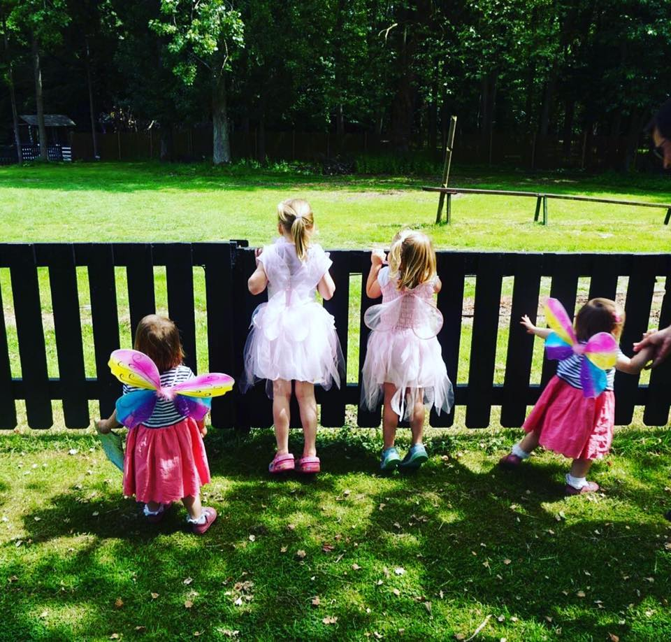 Audley End Miniature Railway  Enchanted Fairy and Elf Festival – Review