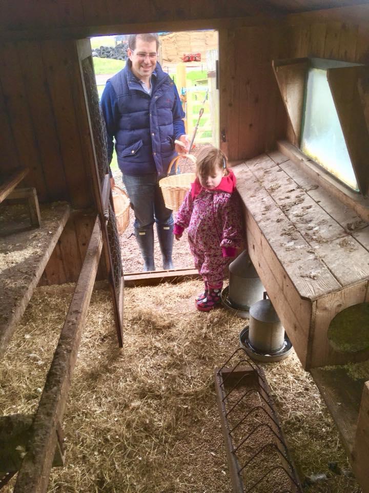 Hen coop at the Dandelion Hideaway