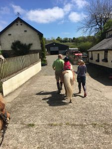 The Popitha Twins are grooming and riding and riding the ponies at North Bradbury Farm