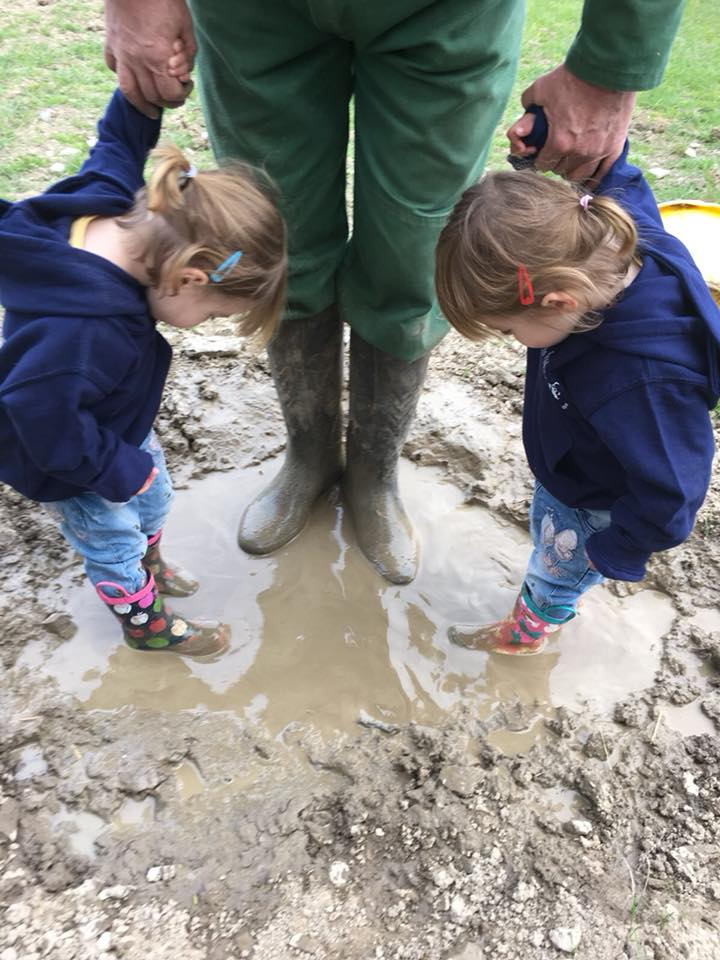 The popitha twins at North Bradbury Farm with Farmer Chris playing in the pigs wallow