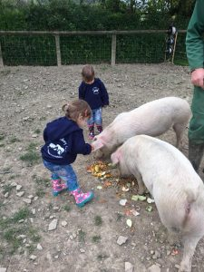 The Popitha Twins are helping Farmer Chris feed the pigs