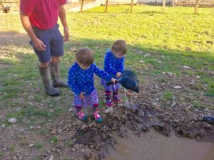 The popitha twins at North Bradbury Farm playing with the pigs