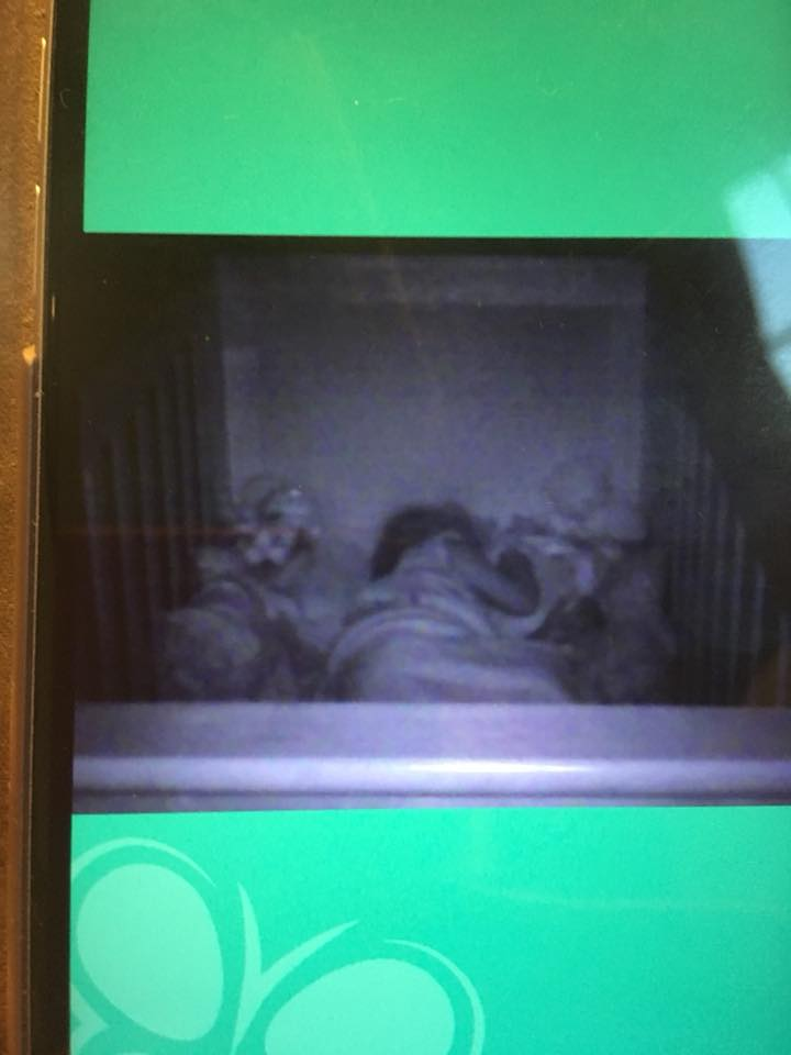 Summer Infant wireless travel monitor picture on baby on a phone