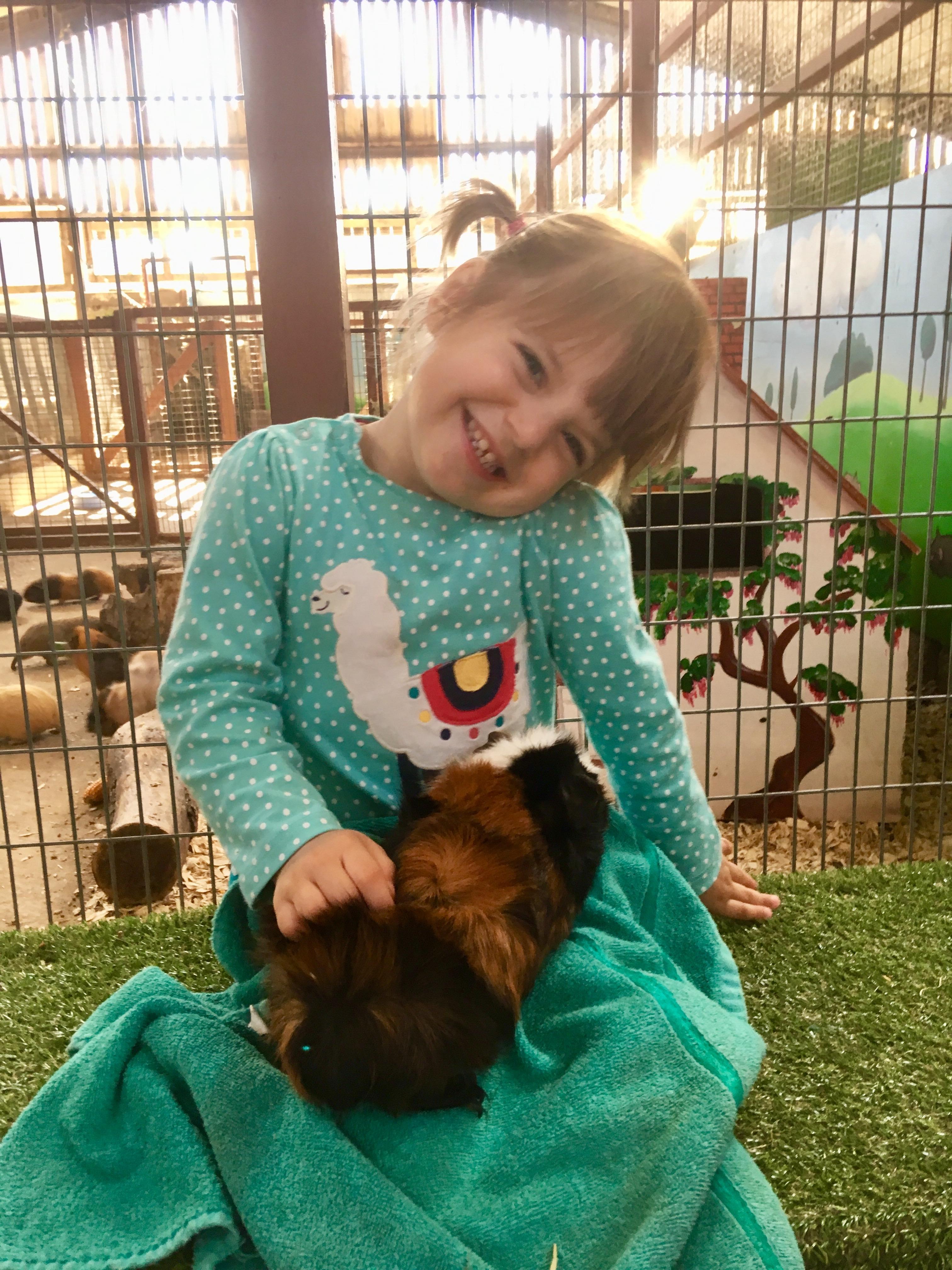 child holding a guinea pig
