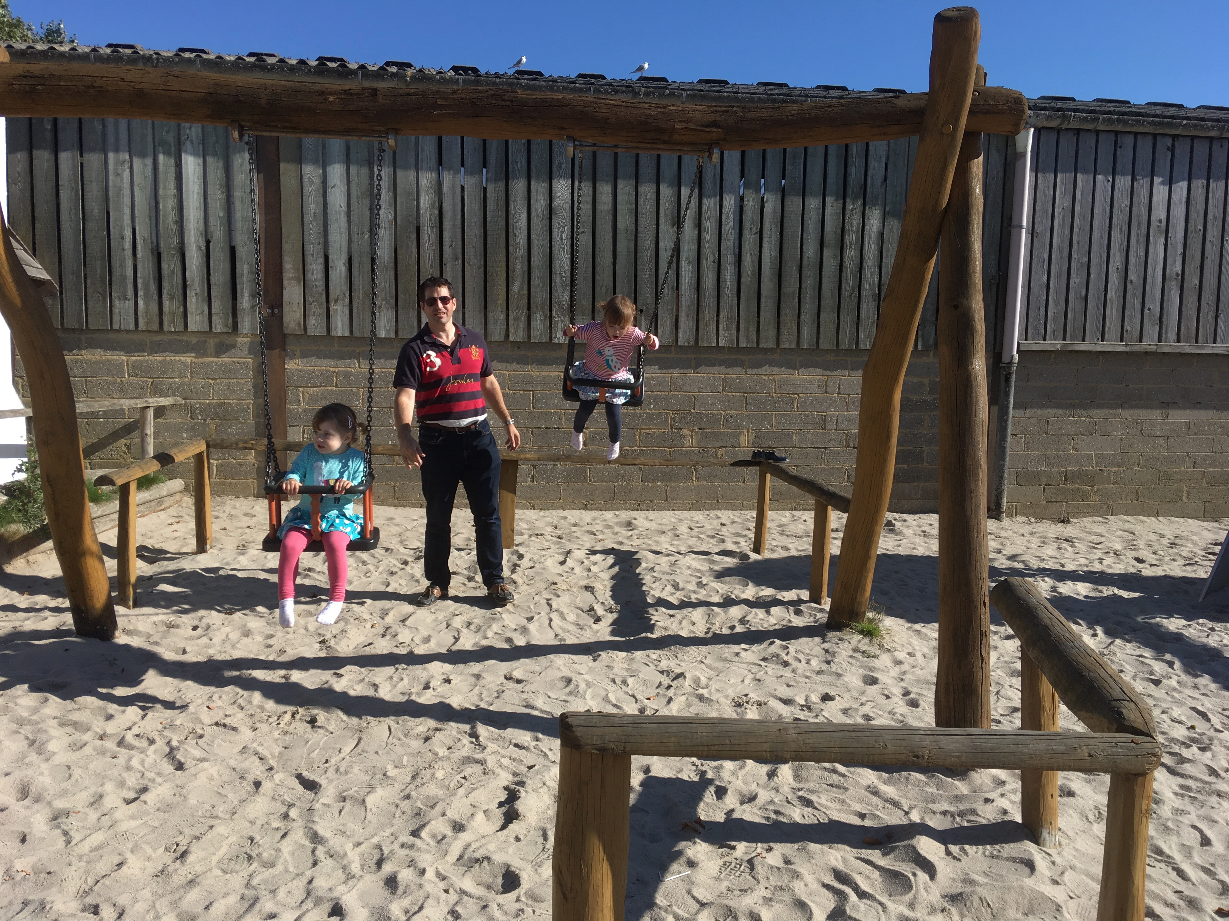 twins on swings at farmer palmers