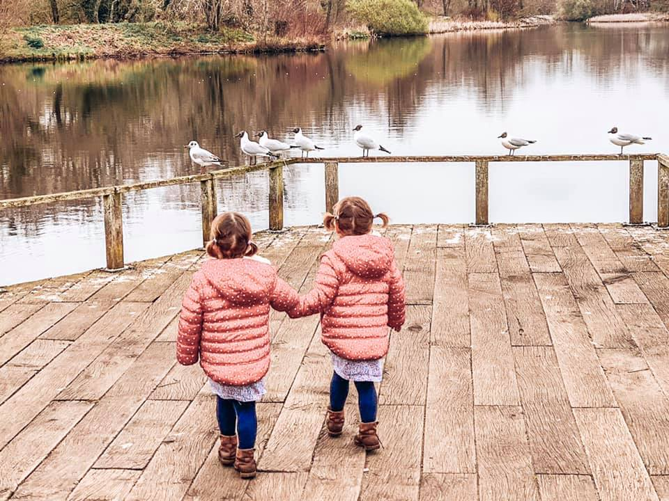Moor Valley Country Park near Spindle cottage. A family friendly cottage in the New Forest.