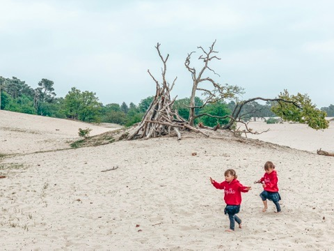 Dunes of Loon and Drunen National Park. Twins running in the sand. A great place to visit in Holland with kids.