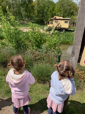 Twins watching two Lions sleeping on top of a landrover at Beeske Bergen Safari Park, Holland
