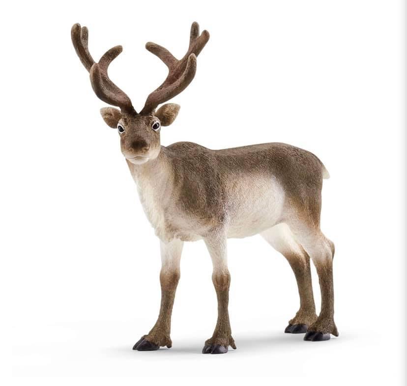 Schleich Reindeer Model