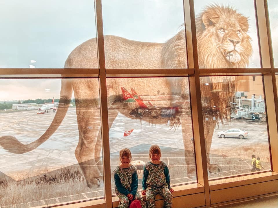image of twins sat in a window ledge overlooking aircrafts with a image of a lion as a large reflection in the glass
