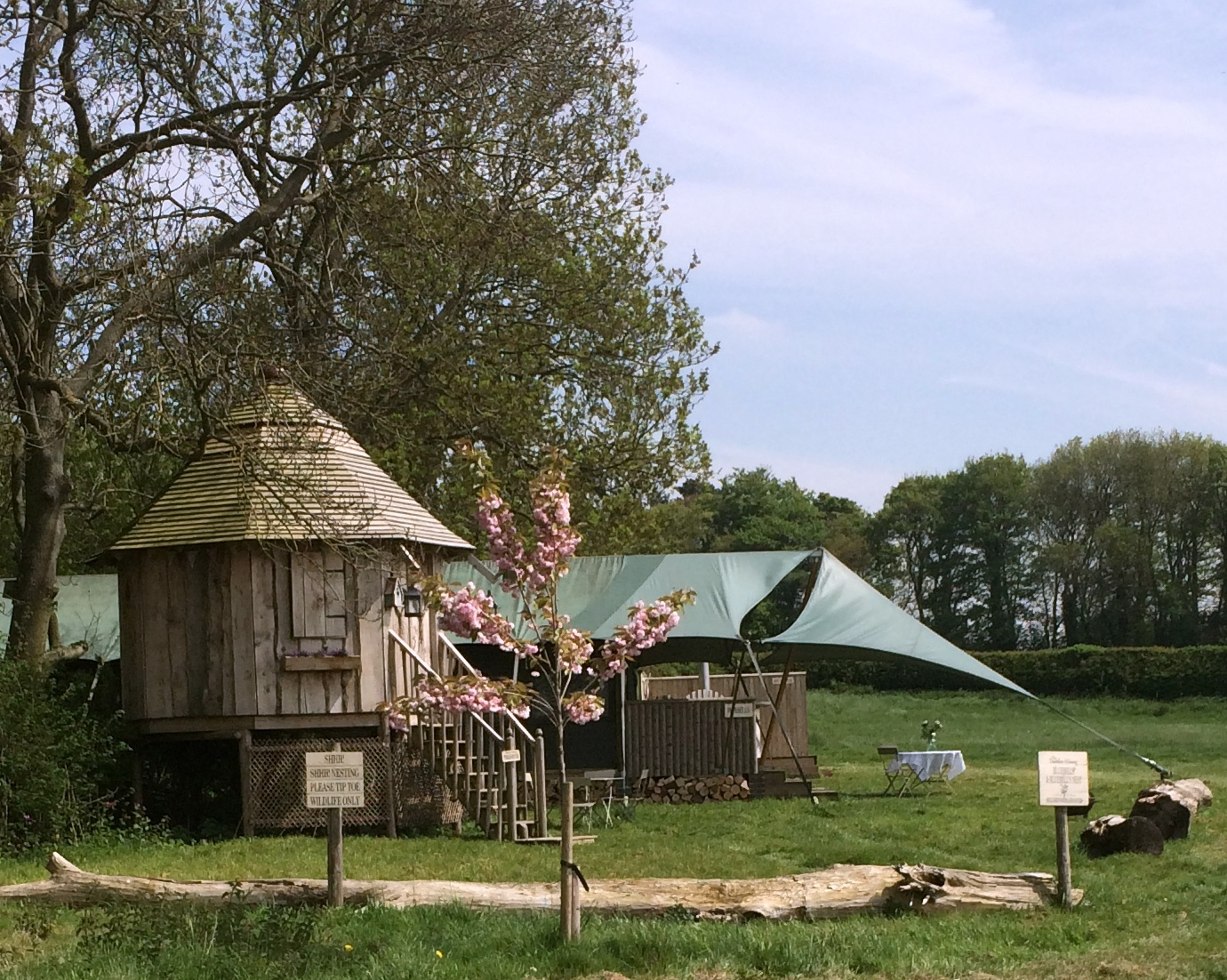 glamping tent in a wild meadow at the Dandelion Hidaway site in Leicestershire. a great UK Holidays with Toddlers