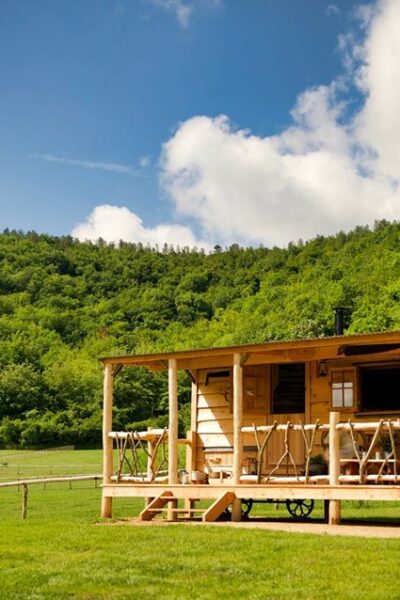 Wooden log cabin sat in the middle of the field surrounded by trees