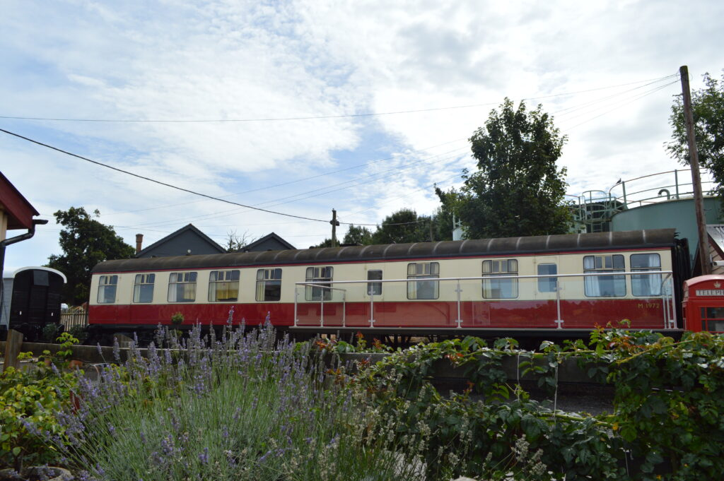 Red and cream static railway carriage surrounded by long grass
