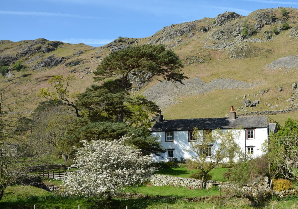 white cottage situated at the bottom of a valley surrounded by trees and grass with a stone wall out the front