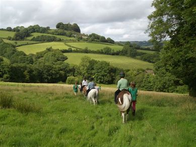 Ponies being ridden through green fields with rolling hills in the distance