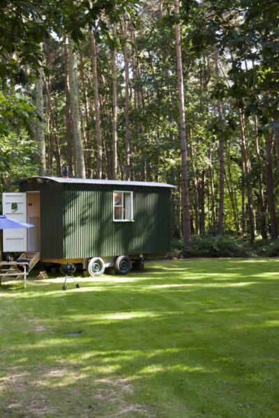 green shepherds hut with a white front door sitting on the lawn with trees and a wooded area behind. A small table and chairs to the front with a blue umbrella