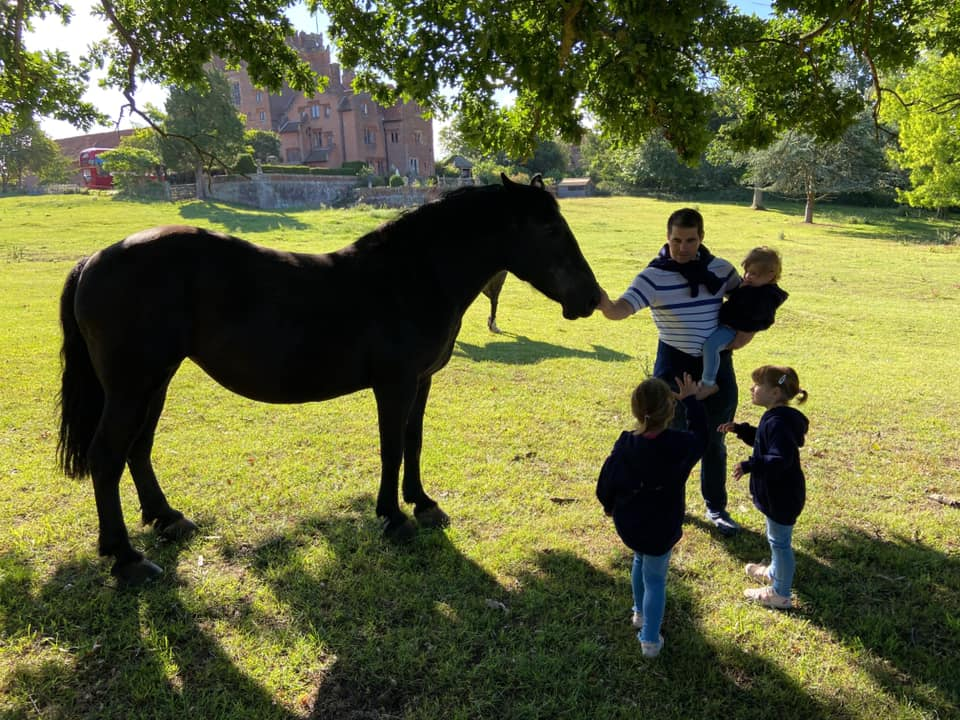 a family stroking a black horse with layer marney tower in the back ground
