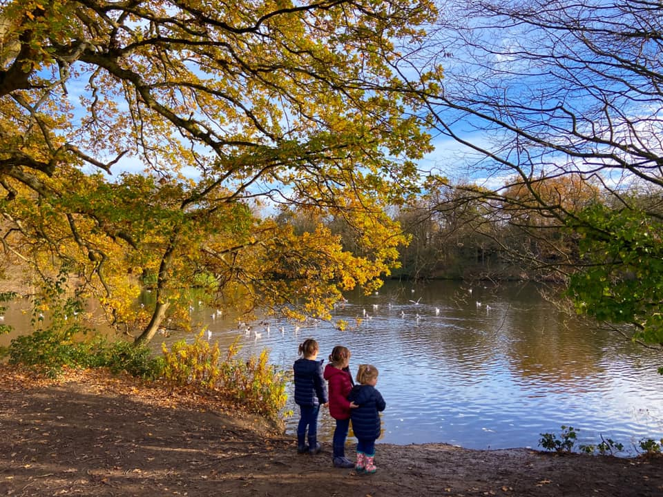 three children standing on the edge of a large lake with autumn trees hanging over head