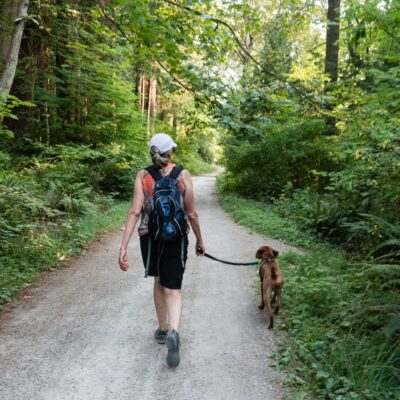 Traveling With A Pet: Dos And Don'ts