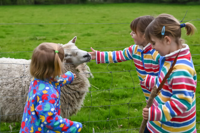 Feather Down glamping with girls stroking the sheep
