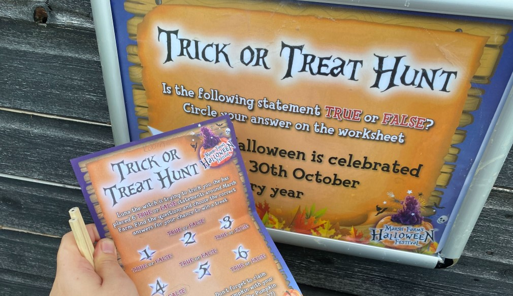 trick or treat flyer for Marsh farm pumpkin patch in essex